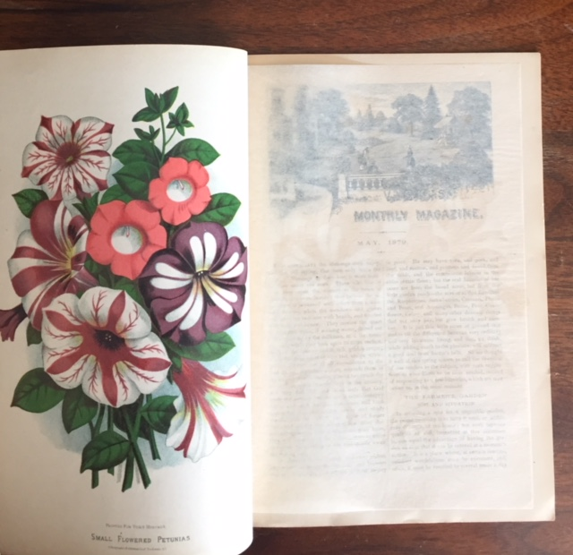 Vick's Illustrated Monthly Magazine [for May, 1879; Vol. 2 No. 5]. Various, s.